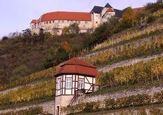 Ferienwohnung in Freyburg