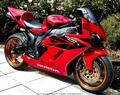 2005 CBR 1000 RR