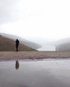 Into Douro's mist... by diana.leaocosta