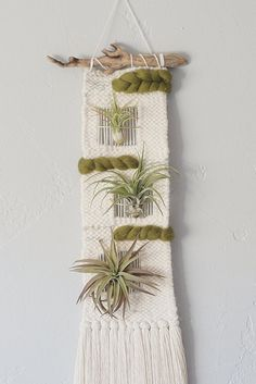 "Handwoven wall hanging made with blended wool yarn in ivory with grey accents. 100% wool roving twist in a olive or grey. Negative space opening woven in. Gold wire details holding 3 large air plants (tillandsia). Hung on driftwood from the coast of Oregon. Measures ~ 7""W x 20""L. Please see menu for section on Ai"