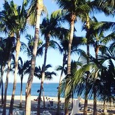#mexico #cabo #wave #wavy #lobster #crab #seafood #sun #sunshine #happy #goodlife #shark #beach #beachboy #poolboy #versace #goldchain #diamonds #tanned #tattoo #tattoos #tat #ink #inkedup #tattoomodel #boyswithtattoos #canada #candian #vancouver #vancity