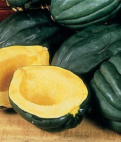 Squash, Winter, Acorn Table Queen - 1.50 - 80d 12 inch 24 inch spread - The flesh of this heirloom acorn is a sweet golden yellow that turns more orange in storage and the rind is dark green and ribbed. GARDEN HINTS: Leave on vine until fully mature. Harvest before frost, leaving part of the stem attached to the fruit. Store for winter use at 45-55 F in a dry place. - ripe when orange spot on bottom - forgot to order - get in spring