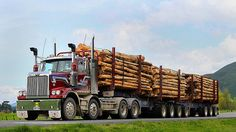 Twin Steer Western Star, I would guess a 100 ton payload alone ??