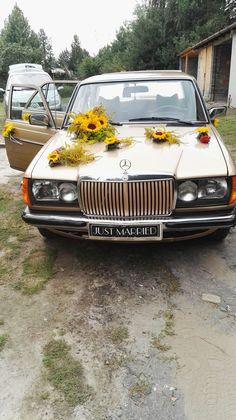 Dekoracje samochodów, wesele, sunfleur, słoneczniki, kwiaty żywe, ślub, Mercedes