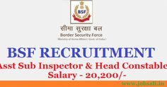 Border Security Force - BSF Recruitment notification has been issued for the posts of Assistant Sub Inspector - Stenographer and Head Constable - Ministerial