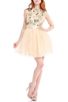 Little Mistress - Fit and Flair Sequin Dress in Nude