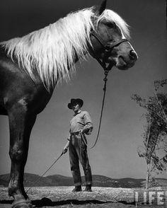 Robert Mitchum - How to train a horse! Life Magazine.