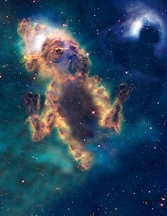 Remember when you were a kid and you used to stare up into the clouds and pick out shapes and animals? Well Chris Keegan has taken that timeless exercise to whole new level by applying it to photos of space from NASA's Chandra X-Ray Observatory.