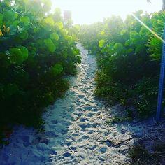 Path to morning riches.  #delraybeach #sunrise #30daysofchange