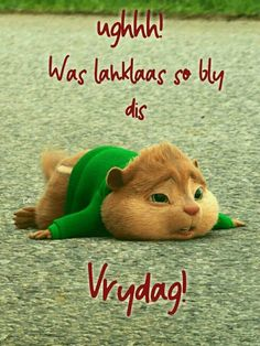 Good Morning Messages, Good Morning Greetings, Lekker Dag, Good Morning Vietnam, Goeie Nag, Goeie More, Afrikaans Quotes, Weekend Quotes, Cute Quotes