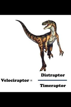math worksheet : 1000 images about science  speed distance on pinterest  : Maths Speed Distance Time Worksheets