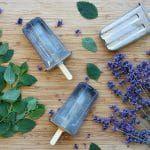 Lemon Balm Recipes, Sage Recipes, Herb Recipes, Canning Recipes, Elderberry Recipes, Elderberry Syrup, Mint Shampoo, Shampoo Bar, Wine Making