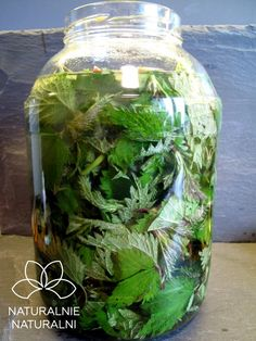 Fruit Recipes, Healthy Recipes, Conservation, Edible Flowers, Medicinal Plants, Healthy Drinks, Preserves, Health Tips, Herbalism