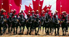The Royal Canadian Mounted Police Musical Ride will perform at the Ottawa International Horse Show on Friday, June at p. Photo by John McQuarrie Canadian Things, I Am Canadian, Canadian History, Canadian Symbols, Canadian Culture, Canada Day, Canada Trip, Toronto Canada, All About Canada