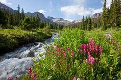 West fork of Cimarron River, Uncompahgre Wilderness, Colorado