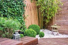 aménagement de jardin -japonais-mur-vegetal-lierre-bambou-galets-blancs