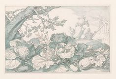Cabbages and Other Plants at the Base of a Tree, Abraham Bloemaert, c. 1610-1630 John and Marine van Vlissingen Art Foundation
