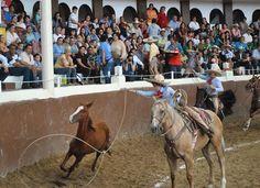 Este día daremos a conocer a toda la familia charra las bases para la Olimpiada Nacional, misma que se realizará en el estado de Morelos por decisión de la CONADE. PRIMERO: etapa estatal, que deber...