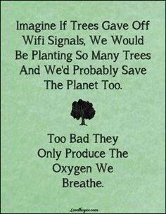 Imagine if trees gave off Wifi signals. We would be planting so many trees and we'd probably save the planet, too. Too bad they only produce the oxygen we breathe.