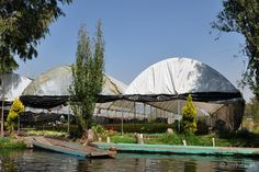 Canaux de Xochimilco - #Mexique