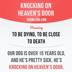 """""""Knocking on heaven's door"""" means """"to be dying, to be close to death"""". Example: Our dog is over 15 years old, and he's pretty sick. He's knocking on heaven's door. #idiom #idioms #saying #sayings #phrase #phrases #expression #expressions #english #englishlanguage #learnenglish #studyenglish #language #vocabulary #dictionary #grammar #efl #esl #tesl #tefl #toefl #ielts #toeic #englishlearning #vocab #wordoftheday #phraseoftheday"""