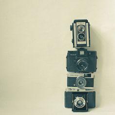 Camera Love Art Print