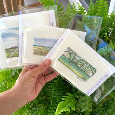 Aquarelle Marshes ! Handmade Blank note cards 😉