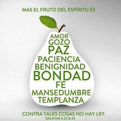 Mensaje :: Ministerio Guerreros de Luz