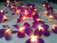 35 Purple Orchid Flower String Lights Wedding Party Floral Home Decor | fairylights - I saw these lights and thought they were really cool and a great price, too!  I want some for after we move...