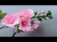 ABC TV | How To Make Lavatera Rosea Paper Flower From Crepe Paper - Craf...