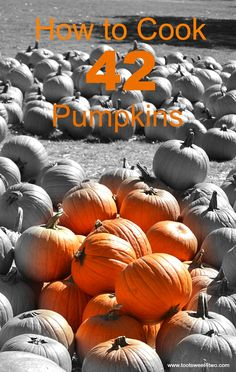How to Cook 42 Pumpk