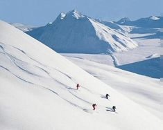 Extreme Skiing Excursion