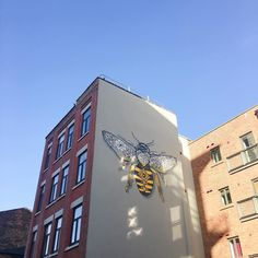 This evening Ive spent over 20mins on the phone to amazon trying not to loose my cool! 3 failed deliveries in 3 days. Gahh! Anywho where is Leeds amazing street art scene?! Manchester is killing it! #manchester #manchesterbee #workerbee #northerquater #mcrlife #theartofslowliving #aquietstyle #mcrfinest #streetart #graffiti #bee #slowlife #slowliving #createnothate #simplethingsmadebeautiful #cityadventures #newcity #girlswhotravel #sundayvibes #playwithlight #lookup #autumnishere #wintersun…