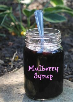 After discovering a mulberry tree in our yard, I have pounds of mulberries that need a use. There is only so much jam you can make and eat. ...