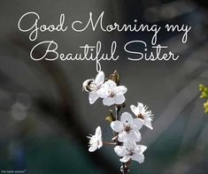 Looking for Good Morning Wishes for Sister? Start your day by sending these beautiful Images, Pictures, Quotes, Messages and Greetings to your Sis with Love. Good Morning Sister Images, Good Morning Happy Weekend, Good Morning Gif, Good Morning Picture, Good Morning Greetings, Morning Pictures, Good Morning Wishes, Morning Coffee, Beautiful Sister Quotes