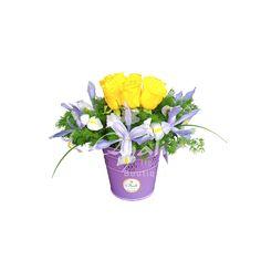 Baldecito de Rosas & Iris - Arreglos Florales
