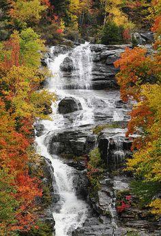 Foliage and Waterfall, Crawford Notch,New Hampshire