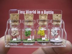 Four Seasons in a Tiny Bottle
