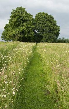 dirtbin designs: Outdoor paths & Walkways