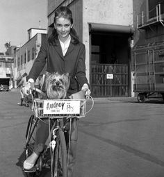 Cycle chic stars: Audrey Hepburn gives her pooch a ride