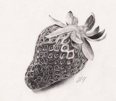 Very detailed strawberry ' Pencil Sketch Drawing, Pencil Shading, Pencil Art, Pencil Drawings, Fruits Drawing, Food Drawing, Graphite Drawings, Art Drawings Sketches, Strawberry Drawing