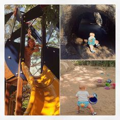 Playing high amongst the tree tops exploring through tunnels & searching for fossils..... #currumbinwildlifesanctuary #playtime #fun  by zoe_boe_mitchell http://ift.tt/1X9mXhV