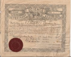 The Veterinary Science Association Certificate, Vintage Document, Animal Science and Care, May 1908, Paper Ephemera, Correspondence Class by BettywasaBombshell on Etsy