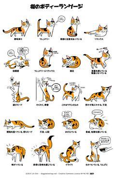 犬と猫の仕草から学ぶ、図解:犬のきもち・猫のきもち