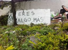 35 mejores frases de Acción Poética por las calles de México - Más de México I'm Still Here, Love Phrases, Street Art, Spanish, Cinema, Relationship, Words, Memes, Instagram