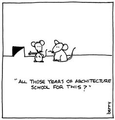 Why we went to architecture school.