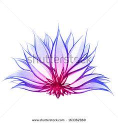 """Lotus Flower Paintings"" probably the best lotus flower I've seen"