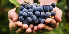 Resultado de imagen para M with grapes
