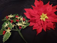 December 2011: First Poinsettia and Holly Spray