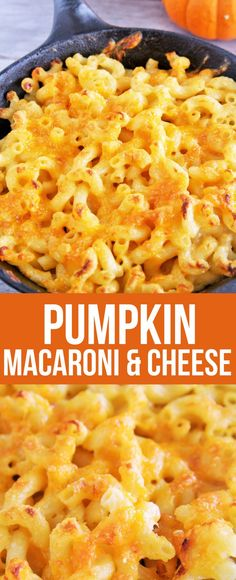 Creamy pumpkin macar